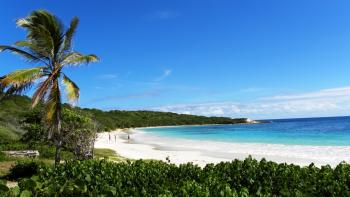 Half Moon Bay Beach Antigua ~ courtesy of excesscarribean.com