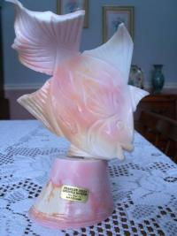 Carved conch shell from the Bahamas