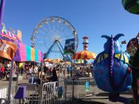 fun at the Ventura County Fair