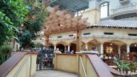 dining al fresco at the Gaylord Palms