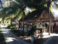 dining palapa-style