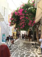 shops and restaurants within Mykonos Town