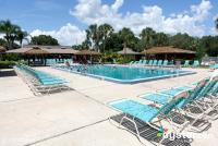 Cypress Cove Resort pool (compliments Cypress cove)
