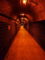 Bollinger cellarways staging magnums in the aging process