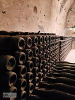 Magnums aging in the limestone cellars for up to 30 years ...