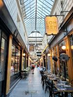 explore Paris' covered shop passages
